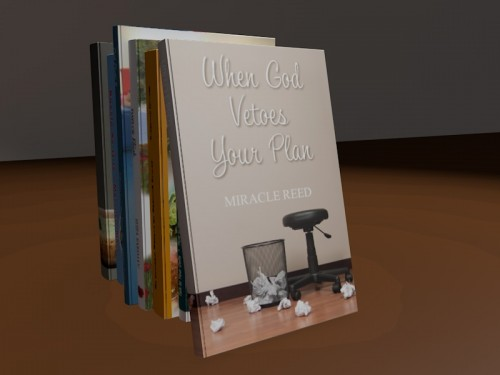 Miracle Reed - When God Vetoes Your Plan - Book Cover